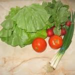 Ingrediente salata de primavara