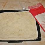 Aluat Pizza cu griș